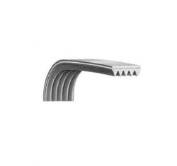 Courroie 8 dents 1200h8el lave-linge/seche-linge - 1200H8MAEL