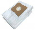 10 sacs aspirateur HANSEATIC 100/825